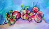 Olga Zakharova Art - Still Life - Crowning Apples