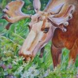 Olga Zakharova Art - Animals - Save It