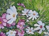 Olga Zakharova Art - Floral - Daisies