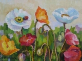 Olga Zakharova Art - Miniature - Ladybug on Poppies