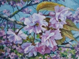 Olga Zakharova Art - Miniature - Spring Blooming