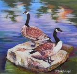 Olga Zakharova Art - Animals - Two Gooses
