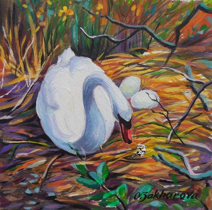Swan's Nest