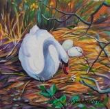 Olga Zakharova Art - Animals - Swan's Nest