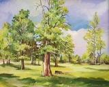 Olga Zakharova Art - Landscape - Sunny day